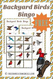 free backyard birds pack instant download backyard bird and