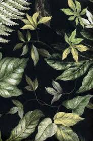 Upholstery Weight Fabric Wao Vintage Style Tropical Botanical Vintage Hawaiian Fabric