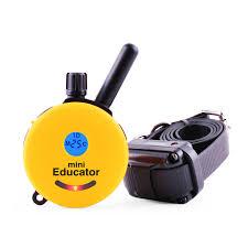 mini educator e collar 1 2 mile remote dog trainer et 300 petco