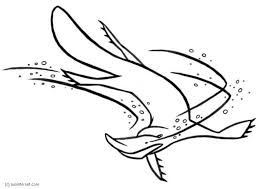 platypus coloring pages platypus pictures cartoon free download clip art free clip art