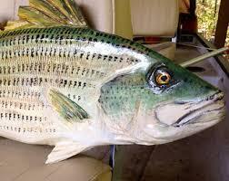 walleye 36 fish sculpture home decor hand made chainsaw