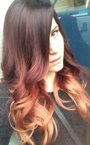 twisted sombre hair citrus hair salon consumer choice award winning hair salon