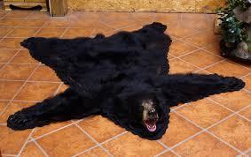 Taxidermy Bear Rug Bear Rugs With Head Wartosciowestrony Top