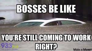 Florida Rain Meme - florida rain scuba diving meme rain best of the funny meme