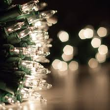 lights 100 clear twinkle tree mini lights 6