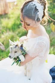 something blue wedding something blue wedding