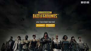 pubg wallpaper reddit playerunknown s battlegrounds stream sniping ban divides