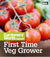 the low maintenance vegetable garden amazon co uk clare matthews