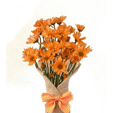 Cheapest Flowers Perfect Apology Gift Cheapest Flower Delivery In Pasolo