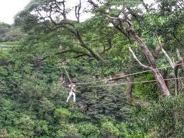 Hidden Canopy Treehouse Monteverde by Zip Lining Across Monteverde Cloud Forest Costa Rica Impulse