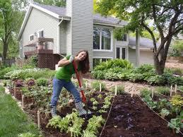 gardening picture budget friendly organic gardening hacks diy network blog made