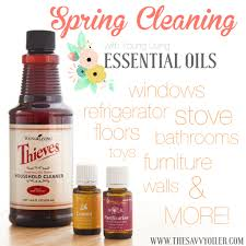 What Is Spring Cleaning Spring Cleaning With Essential Oils The Savvy Oiler
