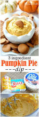 Weight Watchers Pumpkin Fluff Nutrition Facts by Best 25 Pumpkin Pie Dip Ideas On Pinterest Pumpkin Dip Is