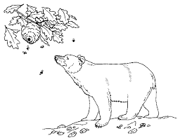 elf on the shelf coloring pages for kids black bear coloring page free printable coloring pages