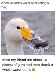 Drinking Water Meme - when you drink water after eating a mint once my friend ate about