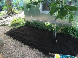 zen garden a backyard transformation album on imgur