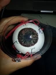 discordia diy foam eyeball science project or creepy halloween prop