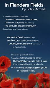 what you may not know about remembrance day poppies national