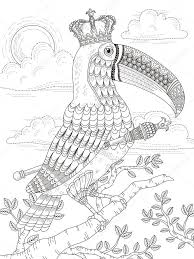 king toucan coloring page u2014 stock vector kchungtw 107627474