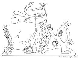 8 images of ocean plants coloring pages printable ocean life