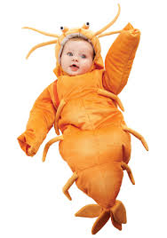 Baby Lion Costume Infant Shrimp Bunting