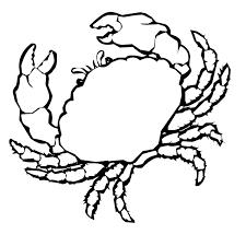 Crab Coloring Sheet Animals Town Free Crab Color Sheet Crab Coloring Page