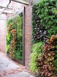 modern garden wall art ideas succulent wall gardens succulent