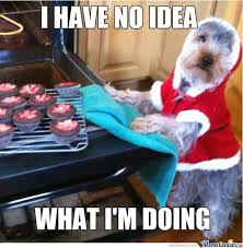 Baking Meme - my dog getting some baking done by berrarr meme center