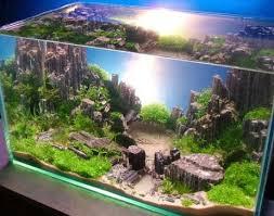 Aquascape Designs Inc Aquascape Aquarium Design Android Apps On Google Play