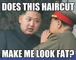 What Does Meme Mean And How Do You Pronounce It - does this haircut make me look fat hungry kim jong un quickmeme