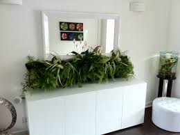 chic simple green plant on pot below square mirror also white