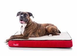 Foam Dog Bed Brindle Waterproof Designer Memory Foam Pet Bed U0026 Reviews Wayfair