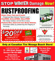 canadian tire in wasaga on 705 422 1250 auto tires