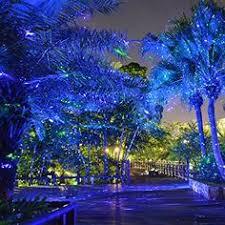 Outdoor Laser Lights Laser Lights Outdoor Laser Lights So Pretty A Walk In