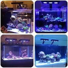led reef aquarium lighting best aquarium led lighting 2018 comparing the best lights for aquariums