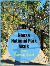 coolum native nursery trees and shrubs to 6 metres noosa national park walk from sunshine beach budget travel talk