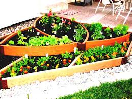backyard home gardening for vegetables ideas small gardens