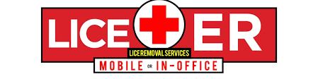 frequently asked questions faq lice treatment less expensive