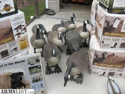 Goose Layout Blind Armslist For Sale Decoys Goose Duck Layout Blinds Etc