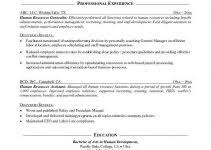 Human Resources Resume Objective Examples by Graduate Resume Template Format