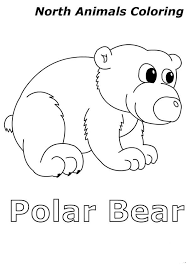 cute baby polar bear in arctic animals colouring page happy