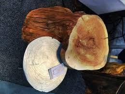 tree ring coffee table furniture furniture tree stump table design with dark rugs for your