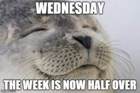 Funny Memes About Wednesday - top 21 wednesday meme meme and wednesday memes