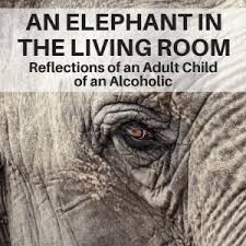 elephant in the living room an elephant in the livingroom reflections of an acoa