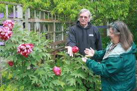 garden tour combats trafficking whidbey news times