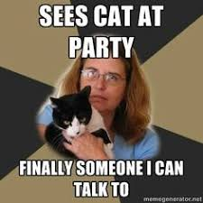 Cat Lover Meme - crazy cat lady memes pinteres