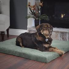 fingerhut dog beds