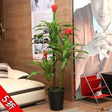 Imitation Plants Home Decoration Buy Living Room Decorative Artificial Flowers Artificial Plants