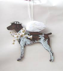 painted german shorthair pointer feathered wing