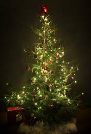 the 8 basics of decorating your tree register